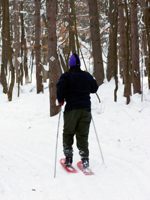 skishoes, snowshoes, cross-country skis
